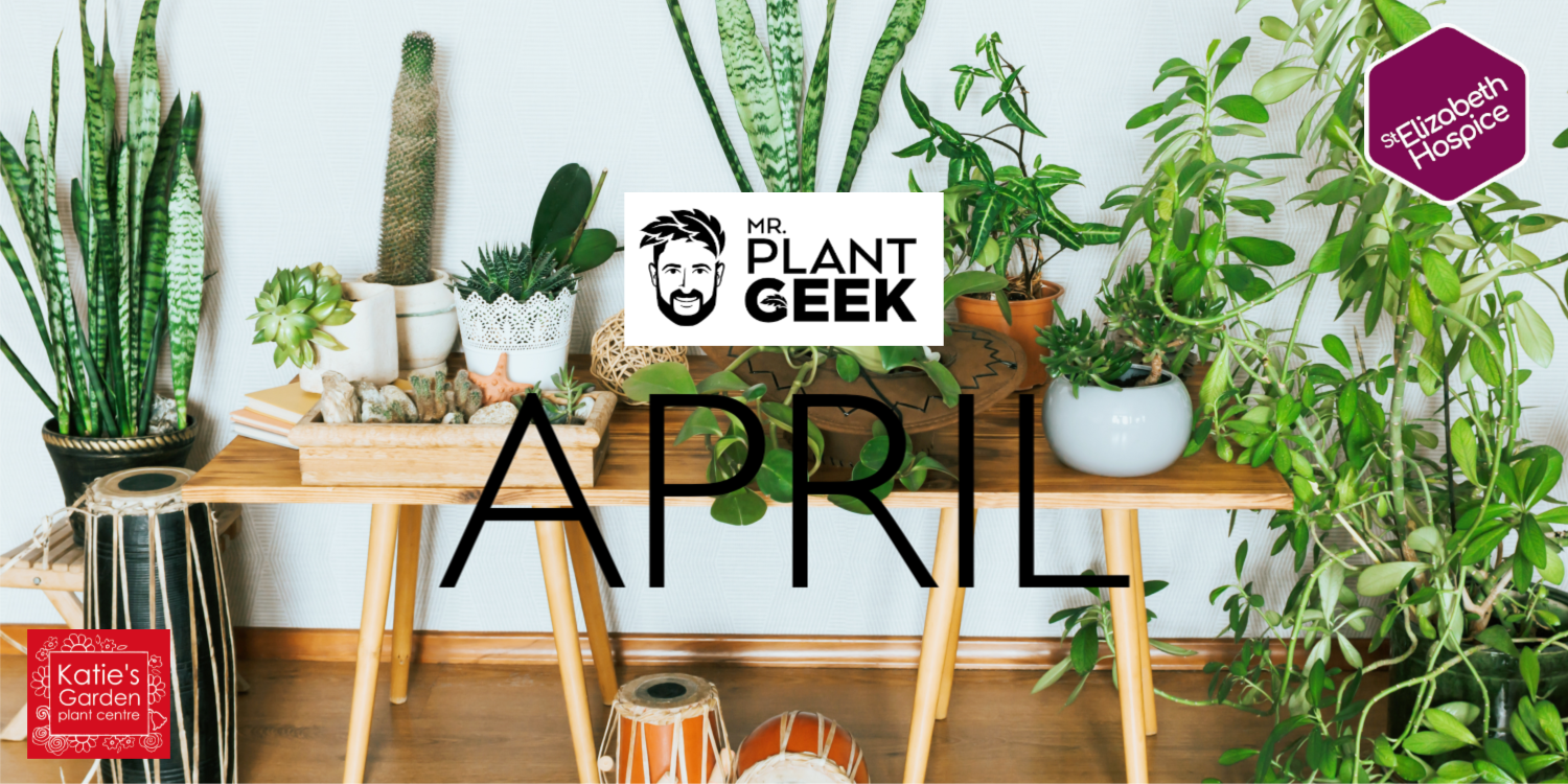 April GGT Blog Background Image
