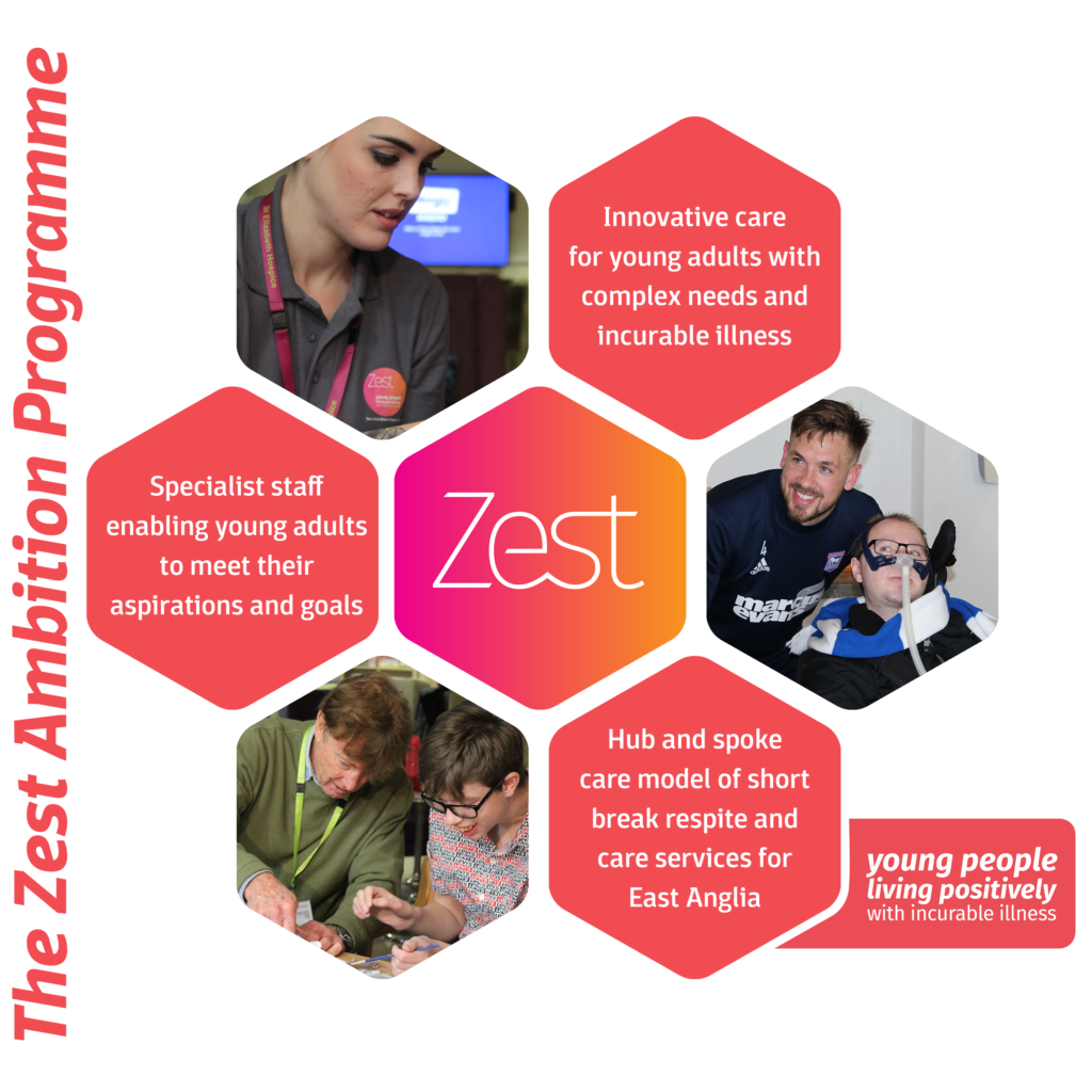 Zest Infographic Example